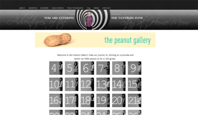 Peanut-Gallery