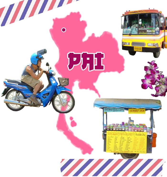 PAIheader2
