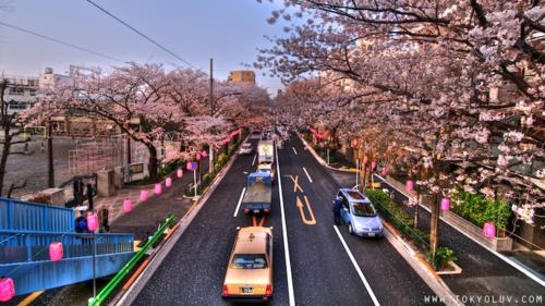 Nakano-dori-nakano-street1_2_3_tonemapped