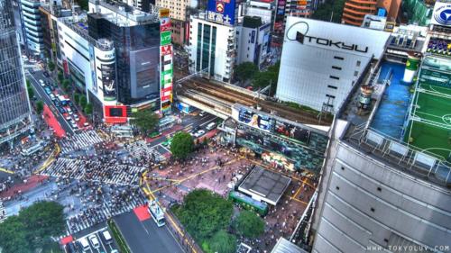 Shibuya_Day__Night2