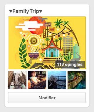 Pinterest-Family-Trip