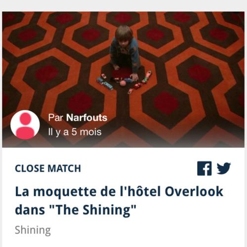 Moquette-Shining
