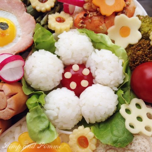 Bento-Kaiseki-Charaben-Alice-Kawaii-Super-Happy-Youpi-Time-Pimpandpomme9
