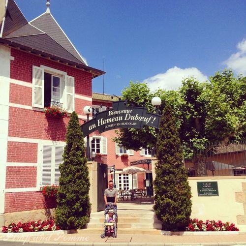 Hameau-Duboeuf-Vigne-Vin-Musee-Beaujolais