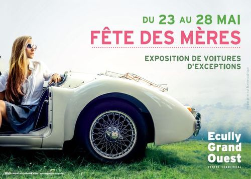 Expo Voitures Ecully Grand Ouest