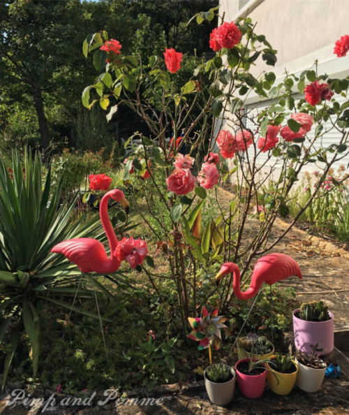flamingo-don-featherstone-magic-garden-jardin-flamand-rose