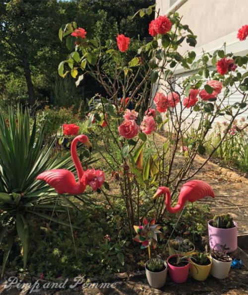 flamingo-don-featherstone-magic-garden-jardin-flamand-rose