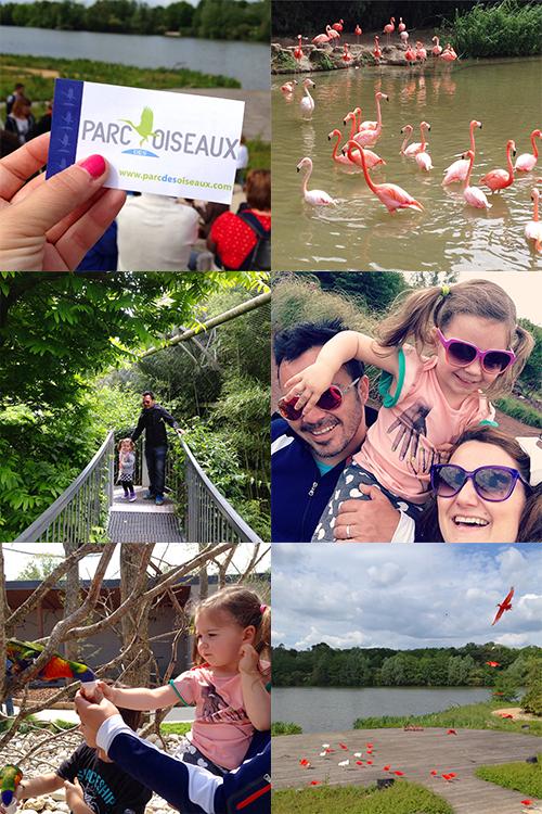 Nos-Endroit-Favoris-LyonParc-Des-Oiseaux-Villars-les-Dombes