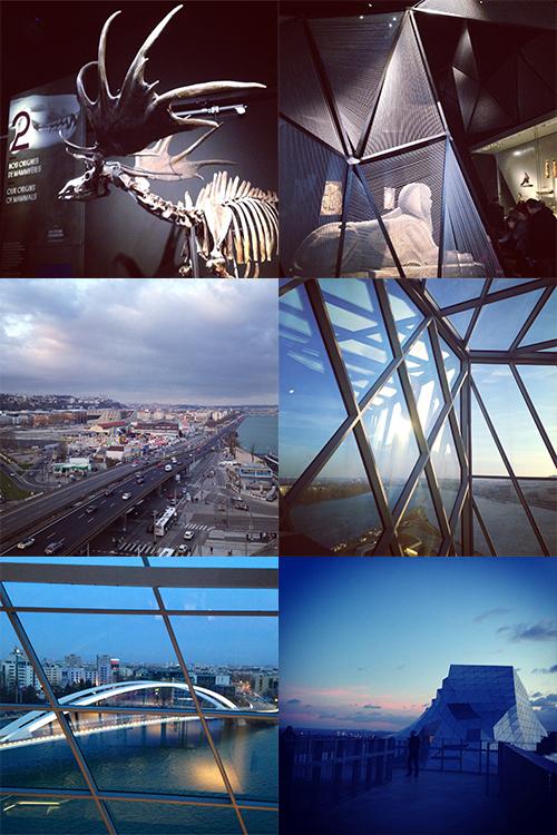 Nos-Endroit-Favoris-Lyon-Musée-Des-Confluences