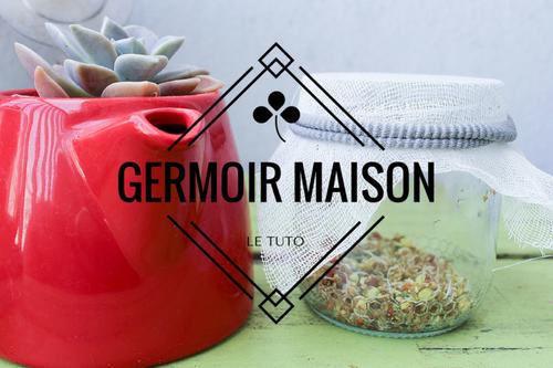 Germoir-maison-Rose-Chiffon