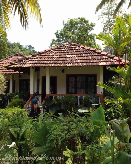Unawatuna-Flower-Garden-SriLanka-voyage-kidfriendly